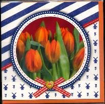Dutch Greeting Card -- Blank Inside -- Orange Tulips