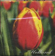Paper Napkins -- Red and Yellow Tulip -- Holland
