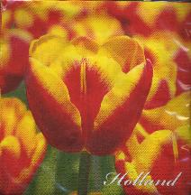 Paper Napkins -- Red and Yellow Tulips -- Holland
