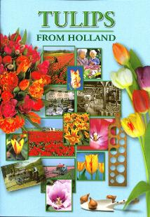 Tulips from Holland--Book in English
