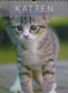 Birthday Calendar -- Cats 12 Pages (easy to write on)